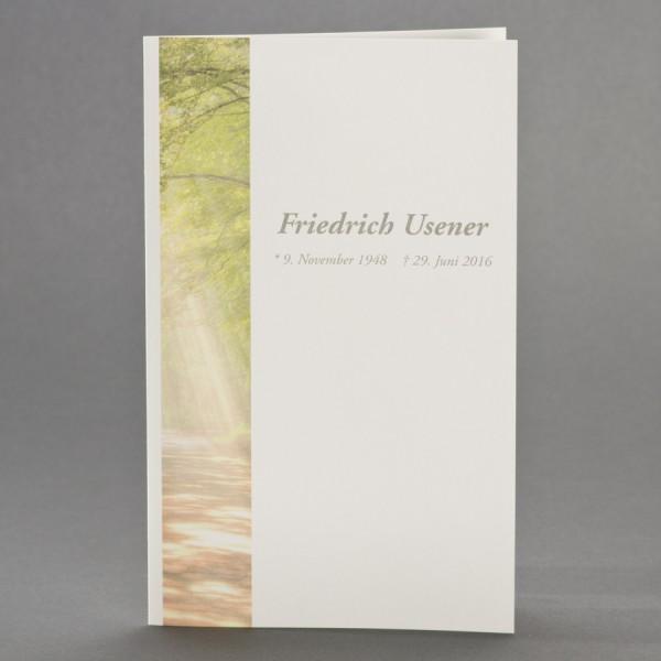Doppelkarte mit Waldlichtung inkl. passendem Briefumschlag
